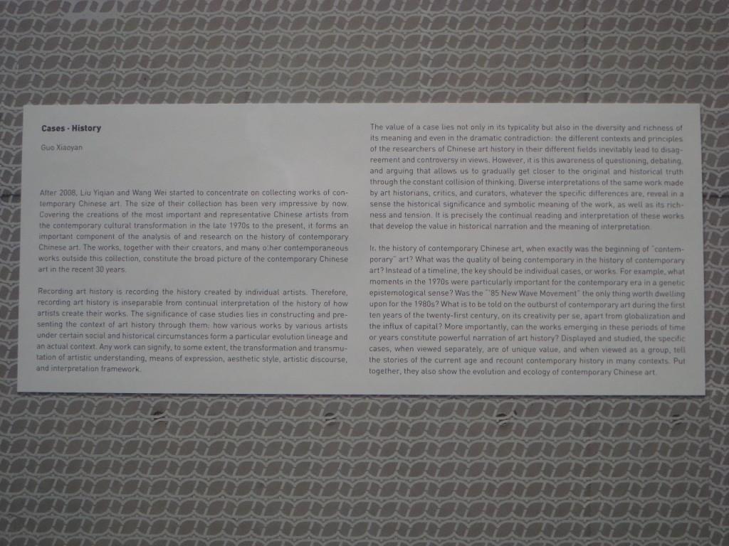 Qualche informazione sulla raccolta del Long Museum